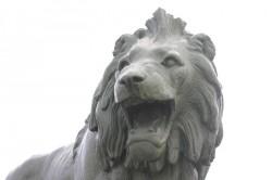 Lion – Ancerville