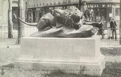 Lion furieux – Paris 75008