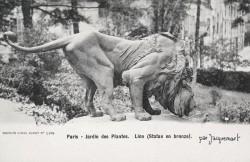 Lion reniflant un cadavre – Paris, 5e arr.