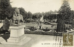Lion – Angers