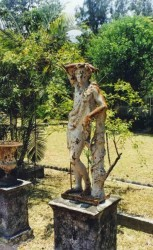 Bacchus de la Maison des Directeurs de l'usine de Grands-Bois   –  Saint-Pierre de la Réunion