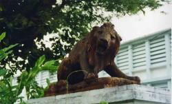 Statue de lion – Saint-Denis de la Réunion