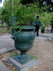 Vase – Zoologico municipal – Parc zoologique – Montevideo