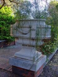 Coupe – Jardin botanique – Jardín  botánico – Montevideo