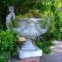 Coupe - Jardin botanique - Jardín  botánico - Montevideo - Image1