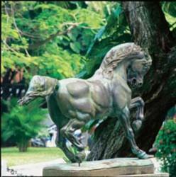 Cheval piaffant –Sociedade Hípica Brasileira –  Cavalo Empinado –Sociedade Hípica Brasileira Rio de Janeiro