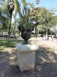 Copón – Coupe n°2- Plaza 9 de Julio – Salta