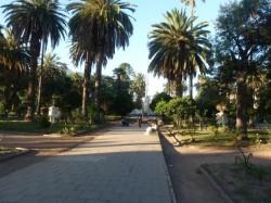 Coupes (3) et piédestaux (2) – Plaza Gral Güemes – Salta