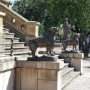 Lions (8) du monument du 20 Février  - Salta - Image9