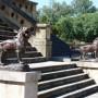 Lions (8) du monument du 20 Février  - Salta - Image10