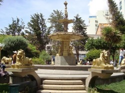 """Leones – lions (2) -""""10 de Febrero"""" –  Oruro"""