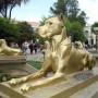 Perro - chien  - Oruro - Image3