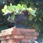 Vases cache-pots - Corte - Image3