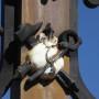 Calvaire  - Monument aux morts - Place de l'Église - Ginals - Image5