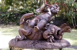 Amour sur un dragon  – Maison Déramond – Saint-Denis de la Réunion