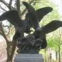 Aigles et proie - Central Park - New York - Image1