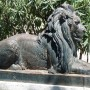 Paires de lions (2) - Domaine de Valrose - Nice - Image2