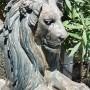Paires de lions (2) - Domaine de Valrose - Nice - Image3