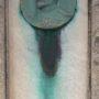 Médaillon de Gabriel Parès - Cimetière de Montparnasse - Paris (75014) - Image1