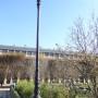 Réverbères (8) - Jardin du Palais-Royal - Paris (75001) - Image2