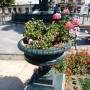 Pileta ornemental -   Grande fontaine - Tacna - Image2