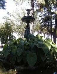Fontaine des Trois Grâces – Curicò
