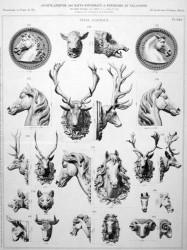 VO2_PL649 – Têtes d'animaux