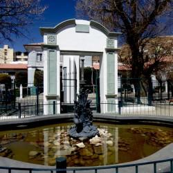 Grullas  – Grues – Oruro