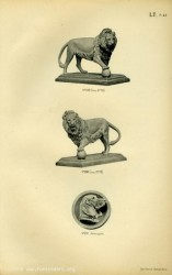 TH_1887_PL40 – Lions, Applique (chien)