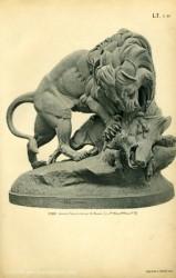 TH_1887_PL46 – Lion et sanglier