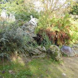 Tortue – Jardin Cassin – Bayonne