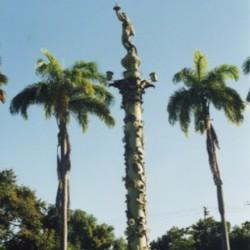 Crépuscule – Recife – praça do Entroncamento