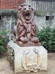 Lion – Alet-les-Bains