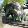 Eléphants attaqués par un tigre - Choisy-le-Roi - Image2