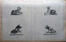 DUC_VO_PL106_F404 – Statues animalières