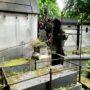 Entourages de tombes - Division 70 - Cimetière du Père Lachaise - Paris (75020) - Image5