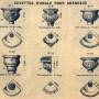 SAL_V1900_PL092 - Cuvettes pour chéneaux - Image2