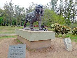 Lionne et son petit – La Leona – Parque Sarmiento – Córdoba