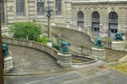 Chiens, loups et sanglier (4) – Cour Lefuel – Palais du Louvre – Paris (75001)
