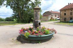 Fontaine 2/2 – Ortoncourt