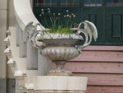 Vase – Museo del Humor – Buenos Aires