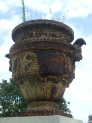 Vases et urnes Calla du jardin des Tuileries – Paris