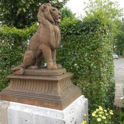 lions   nolay