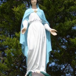 Vierge – Tachoires