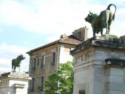 Taureaux – Square G. Brassens – Paris (75015)