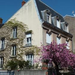 Balcons et appuis de croisées Guimard – 20 rue Madame Vannoz – Nancy