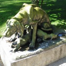 [Chienne avec ses petits]- Collection particulière – Santiago de Chile