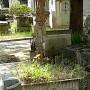 Ornements de sépulture (corbeilles) - Division 95 - Cimetière du Père-Lachaise - Paris (75020) - Image1