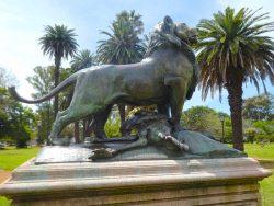 Lion de Nubie – Leon con su caza – Plaza Holanda – Buenos Aires