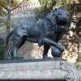 Lions [à la boule](2) - Cerro Santa Lucia - Santiago de Chile - Image5
